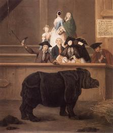Pietro Longhi, The Rhinoceros